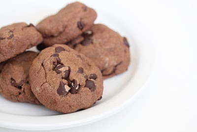 Rich chocolate cookies