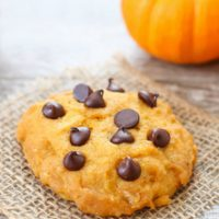 photo of one pumpkin chocolate chip cookie