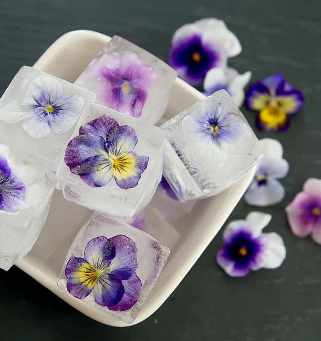 overhead photo of Edible Flower Ice Cubes