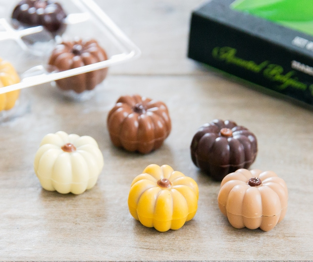 close-up photo of Assorted Belgium Chocolate Pumpkins