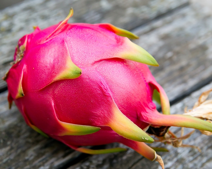[hoto of dragonfruit