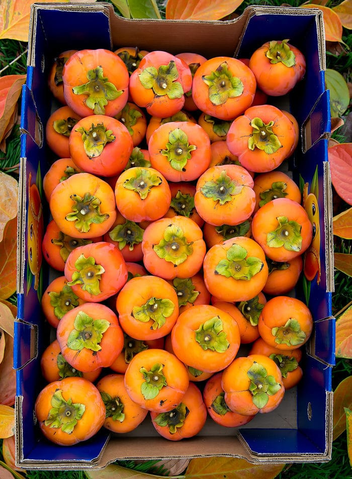 overhead photo of a box of persimmons