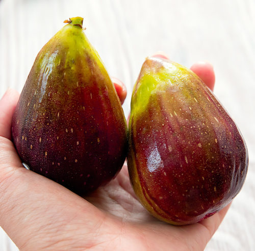 close-up photo of two figs