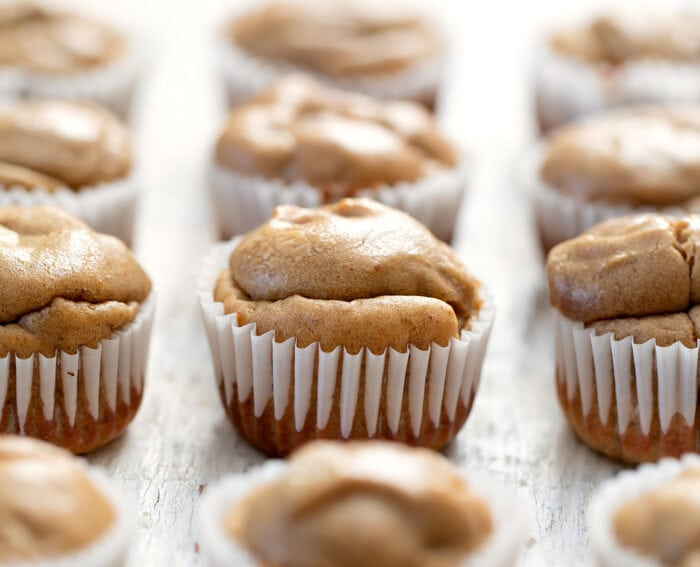 muffins lined up in rows.